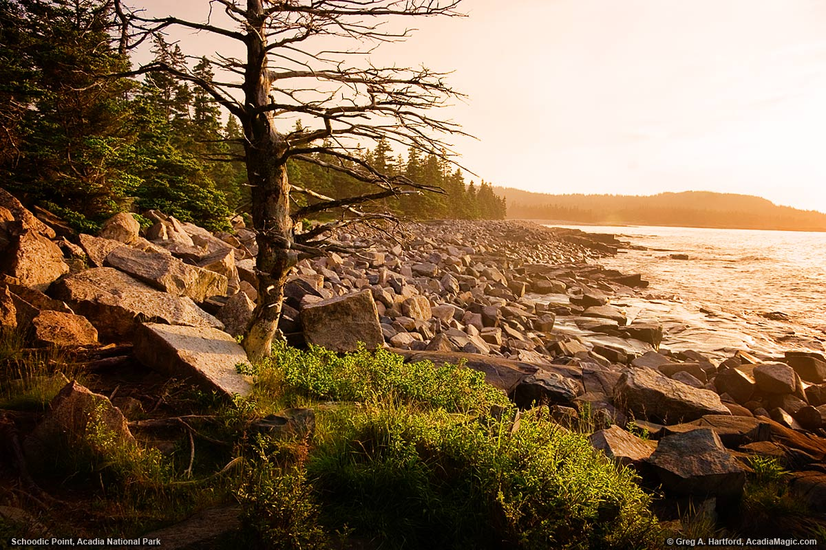 Sunrise at Schoodic point in Acadia National Park
