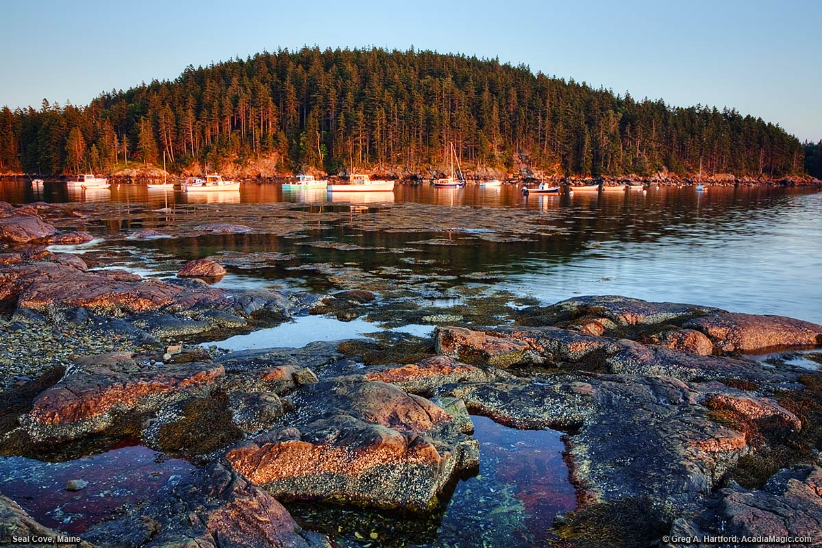 Seal Cove at sunrise on Mount Desert Island