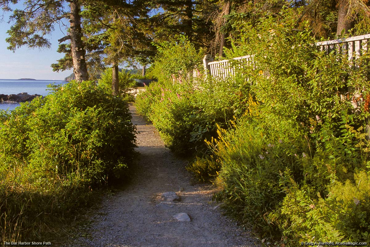 Shore Path on the eastern side of Bar Harbor