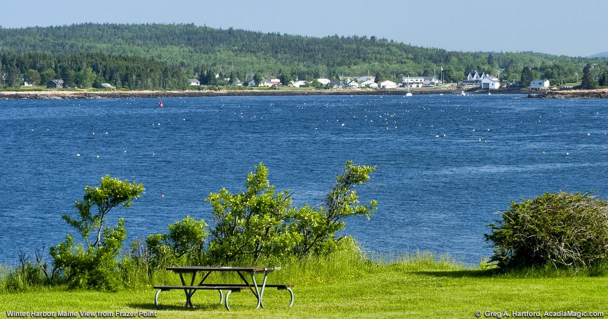 Frazer Point Picnic Area In Acadia National Park At Schoodic