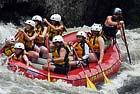 Northeast Whitewater Rafting and Moose Tours