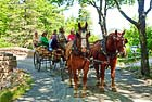 Carriage Ride with Wildwood Stables