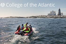 College of the Atlantic Summer Programs