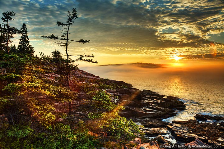 Acadia National Park Coastal Sunrise