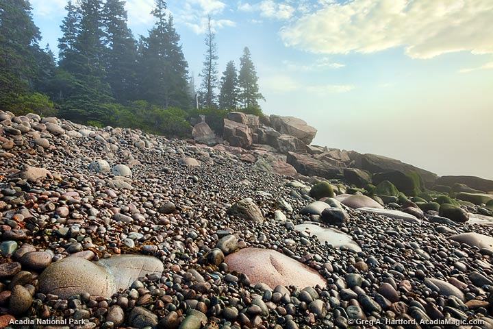 Foggy morning in Acadia National Park near Otter Cliff