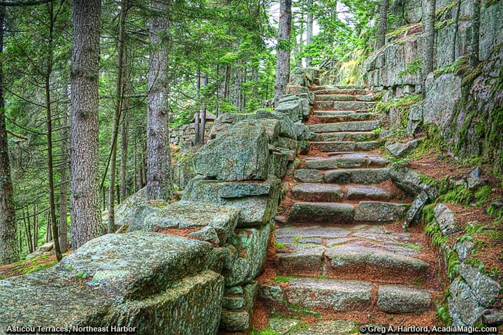 This shows the section of steps that are next to some steep cliffs and lots of evergreen trees.