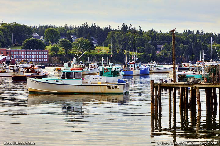 View the fishing village of Bass Harbor near Acadia National Park.