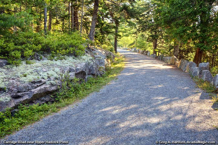Carriage Road near Upper Hadlock Pond