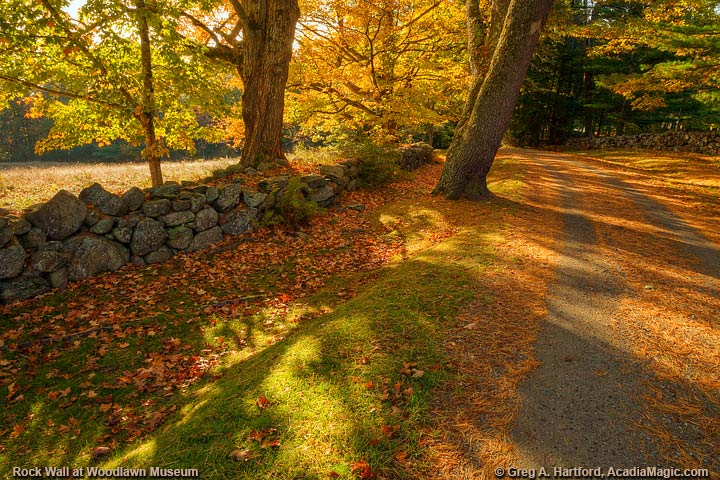 Rock Wall, Leaves and Autumn Road