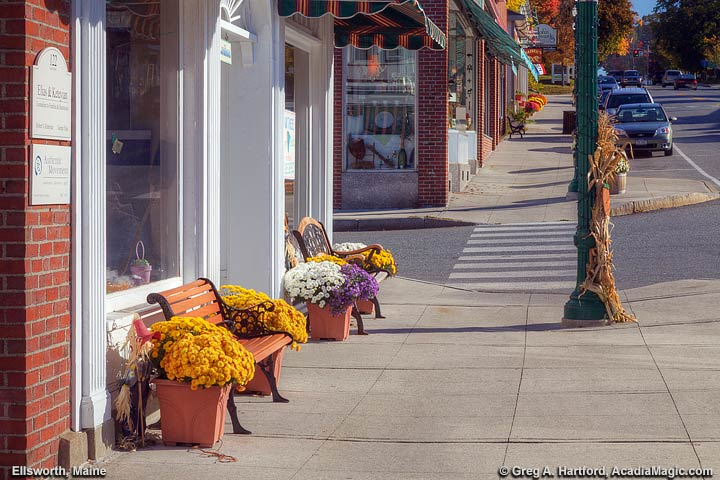 Flowers and benck on Main Street sidewalk in Ellsworth