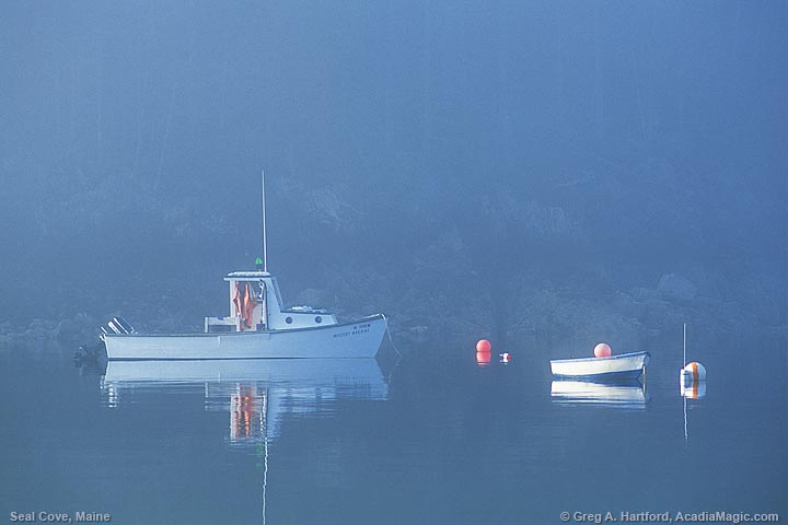Seal Cove lobster boat and dinghy in fog