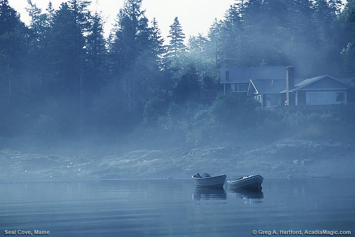 Sailboat at Seal Cove in fog