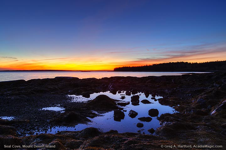 Sunset in Seal Cove on Mount Desert Island, Maine