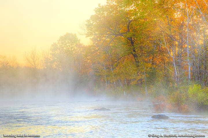 Golden Sunrise on Sebec River