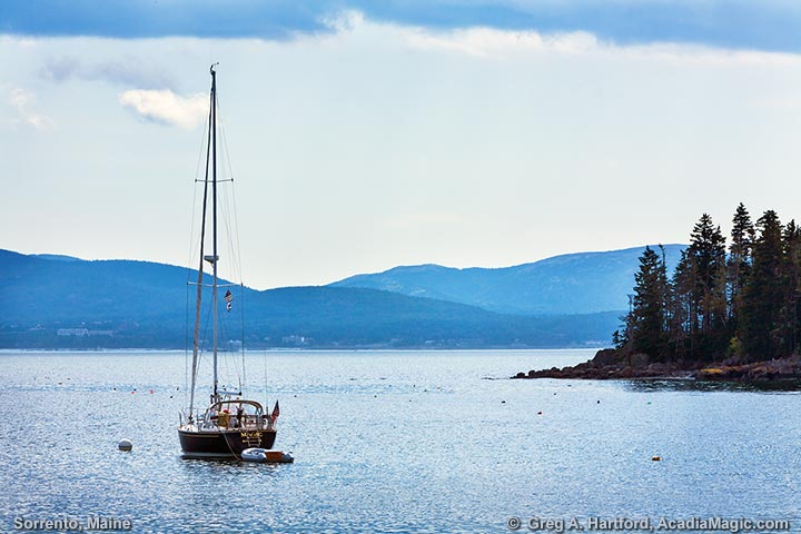 Sailboat in harbor with view of Bar Harbor