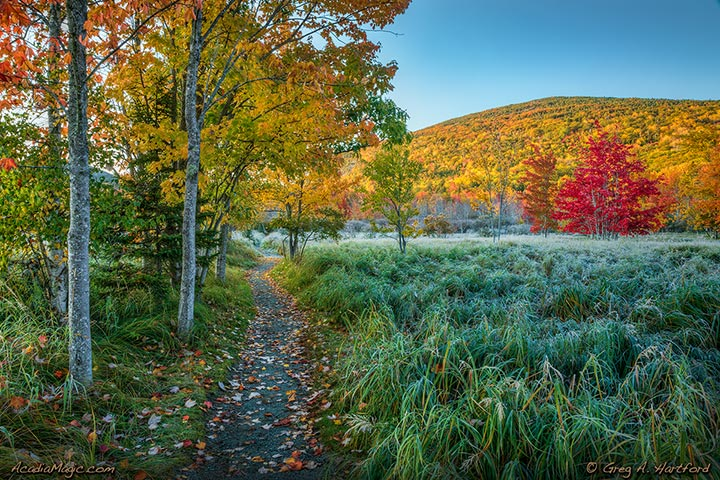 Hiking Trail at Great Meadows in Bar Harbor, Maine and Acadia