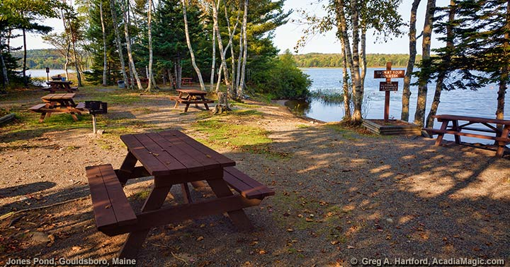 Jones Pond Recreational Area Picnic Table