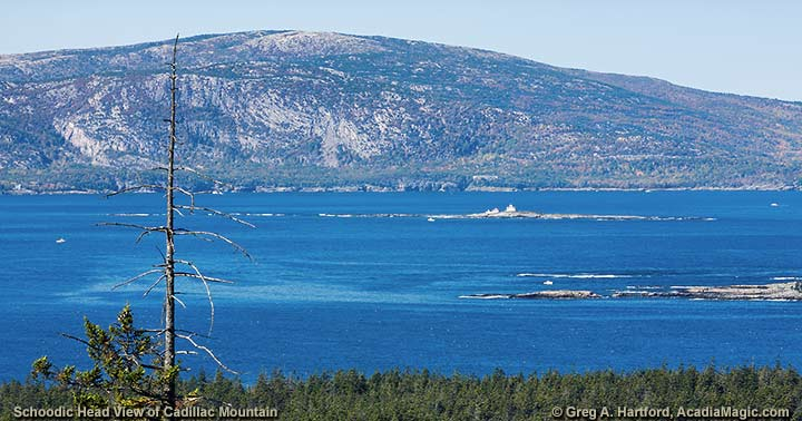Schoodic Head provides a beautiful view of Cadillac Mountain