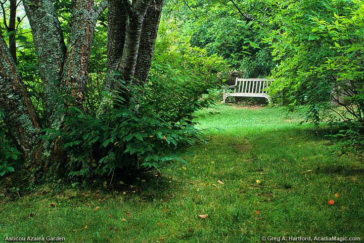 A bench awaits the next visitor.