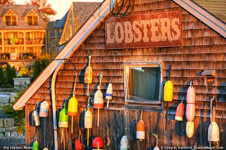 Lobster sign with lobster trap buoys