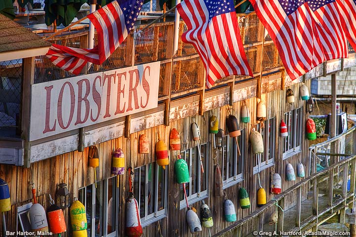 Lobster sign with American flags