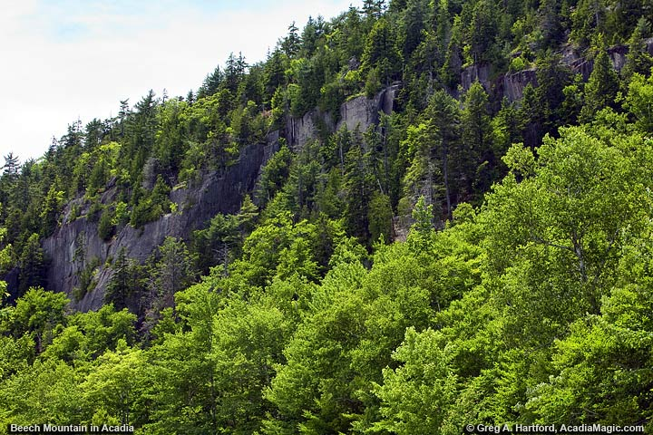 View of Beech Mountain Cliffs at Echo Lake