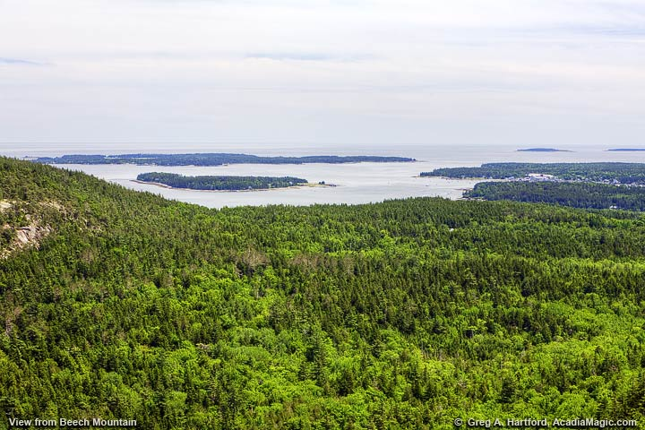 Greening Island and Great Cranberry Island seen from Beech Mountain