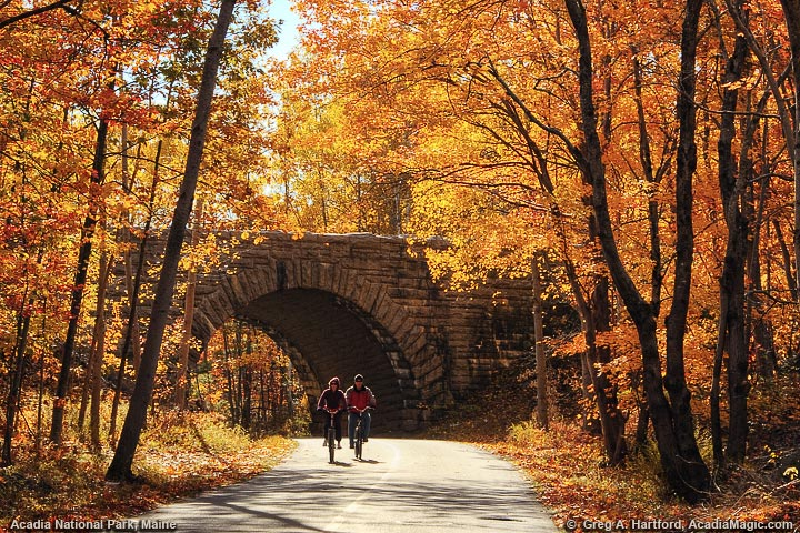 Biking in Acadia National Park, Maine