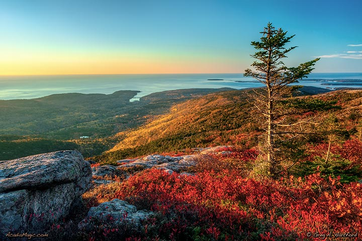 Autumn colors on Cadillac Mountain and view of Otter Cove