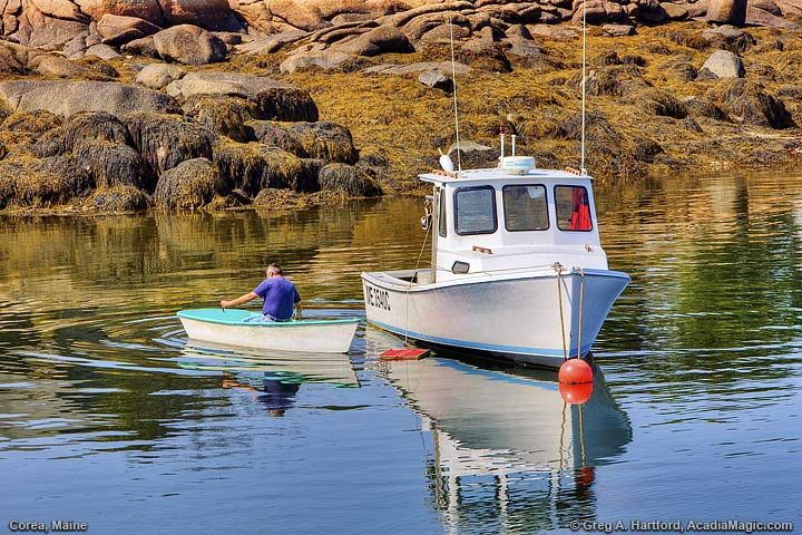 Fisherman rows dinghy to lobster boat