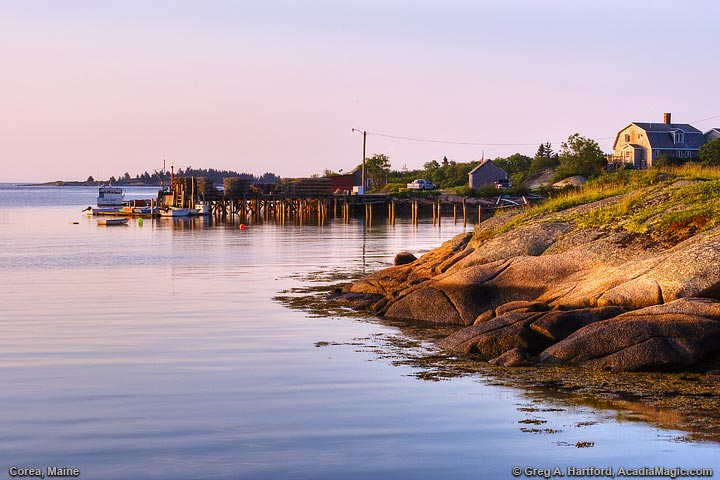 Calm harbor waters at sunrise