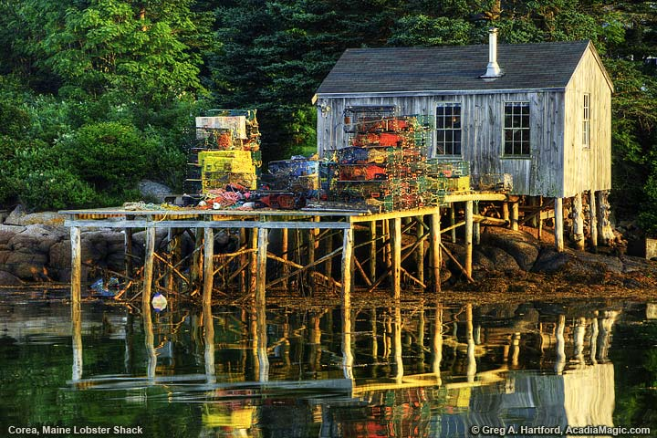 Lobster shack and lobster traps in Corea, Maine