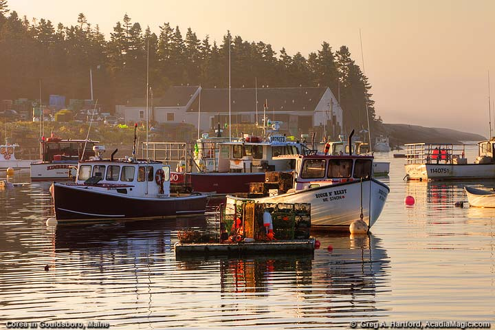Lobster Boats in Fishing Harbor