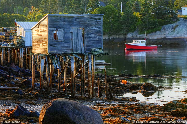 Maine lobster shack at low tide with red lobster boat