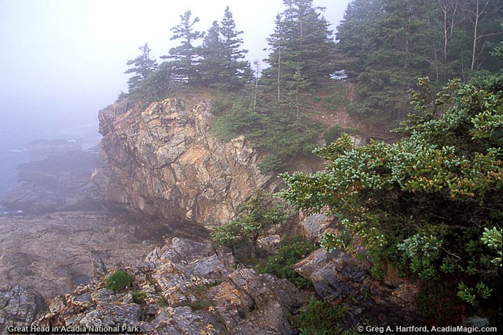 Southern end of Gread Head during thick fog