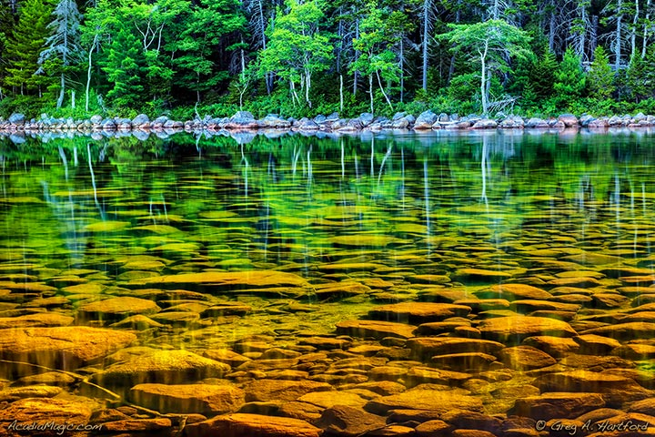 The clear water at Jordan Pond in Acadia