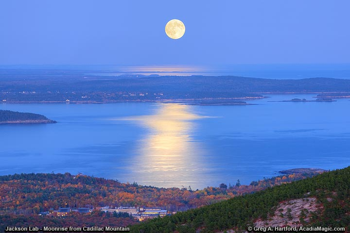 Moonrise over Jackson Lab in Bar Harbor