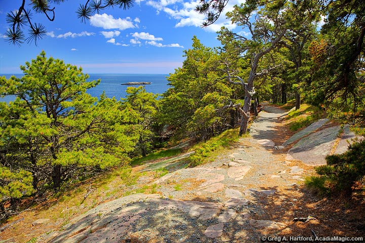 The Ocean Path near Sand Beach in Acadia National Park