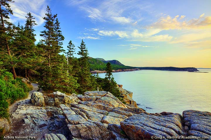 Ocean Path at Otter Cliff in Acadia National Park