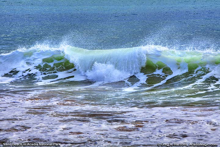 Ocean wave during winter at Sand Beach in Acadia National Park