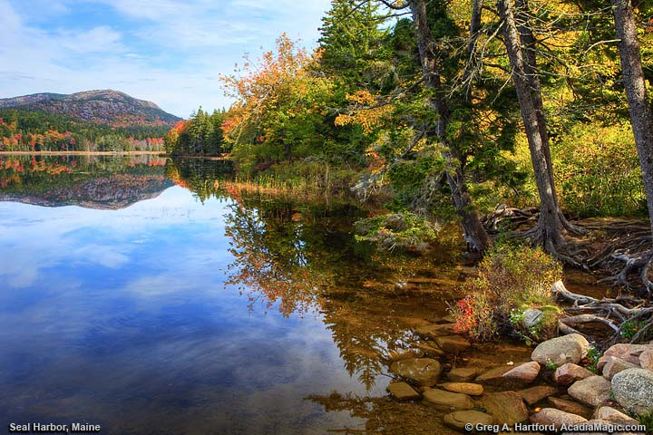 Autumn on Long Pond