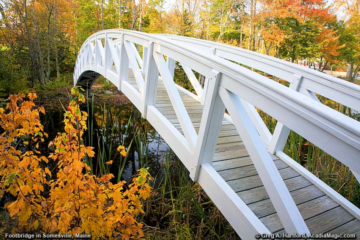 Footbridge with autumn leaves