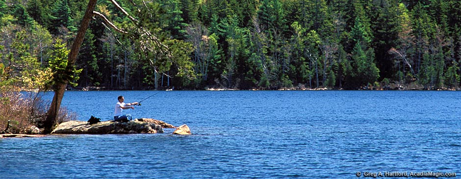 Fishing regulations for acadia national park for Maine fishing laws