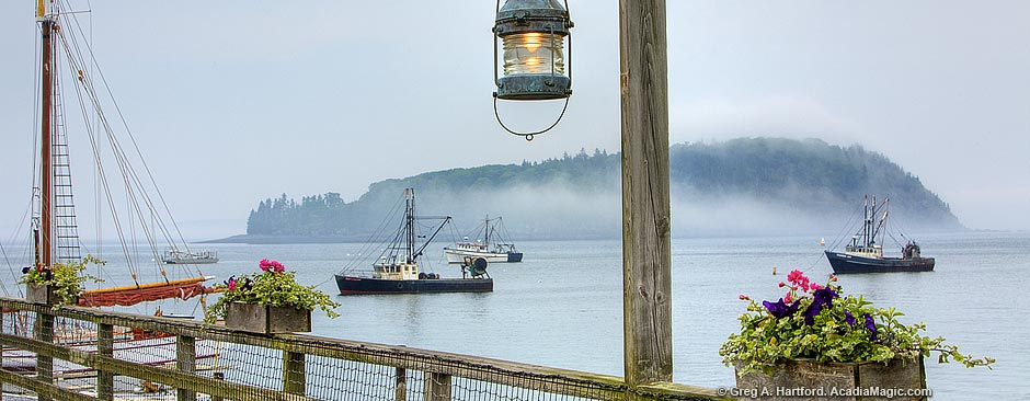 Foggy morning in Bar Harbor, Maine