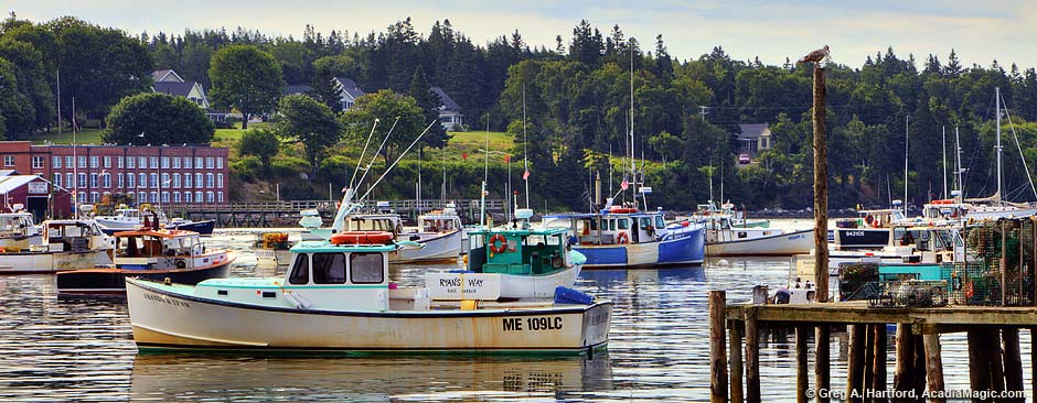Lobster boats in Bass Harbor, Maine