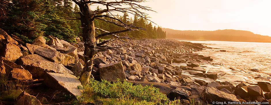 Sunrise on Schoodic Peninsula in Maine