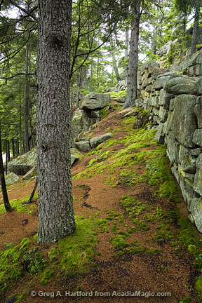 Asticou Terraces and Thuya Garden in Northeast Harbor, Maine, near Acadia National Park