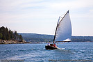 A sailboat exits Somes Sound in Acadia National Park