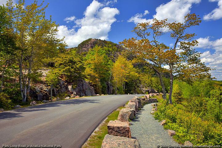 The Park Loop Road near The Beehive and Sand Beach in Acadia National Park