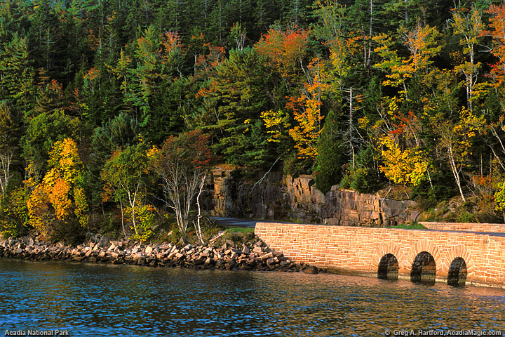 The Park Loop Road at Otter Cove in Acadia National Park